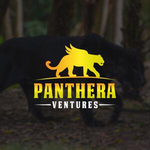 1495074981-Panthera-Ventures