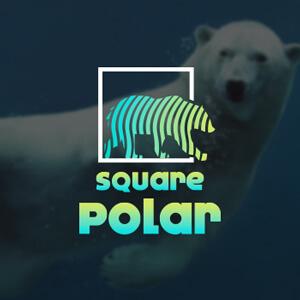 1495075089-Squarepolar