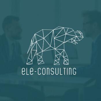 1497939397-ele-consulting