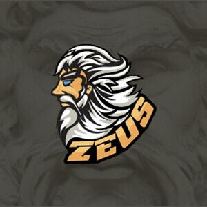 1495277694-zeus