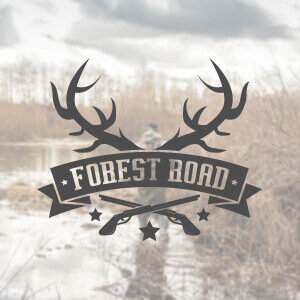 1495276847-forest_road