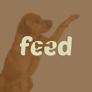 1496284738-feed