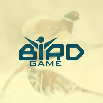 1496723107-birdgame