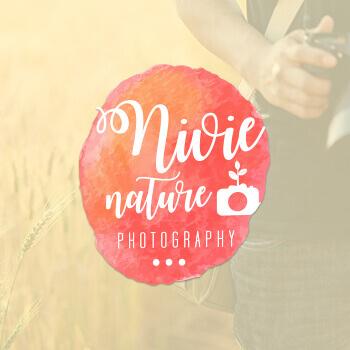 1496725124-Nivie