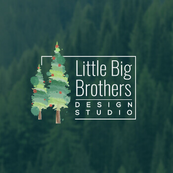 1496725275-Little_Big_brother
