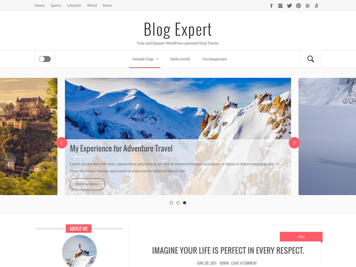 blog-expert