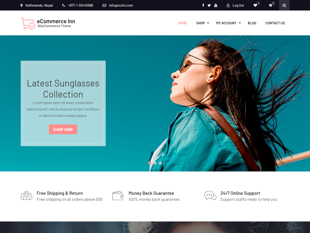 20+ Best Free Responsive WordPress Themes 2018 - Precious Themes